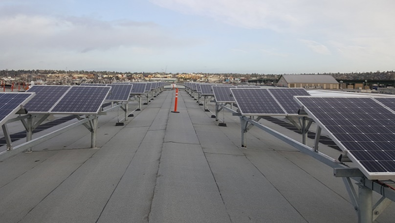 Net Sheds 3, 4, 5 & 6 Roof Replacement & Net Shed 5 Photovoltaic System